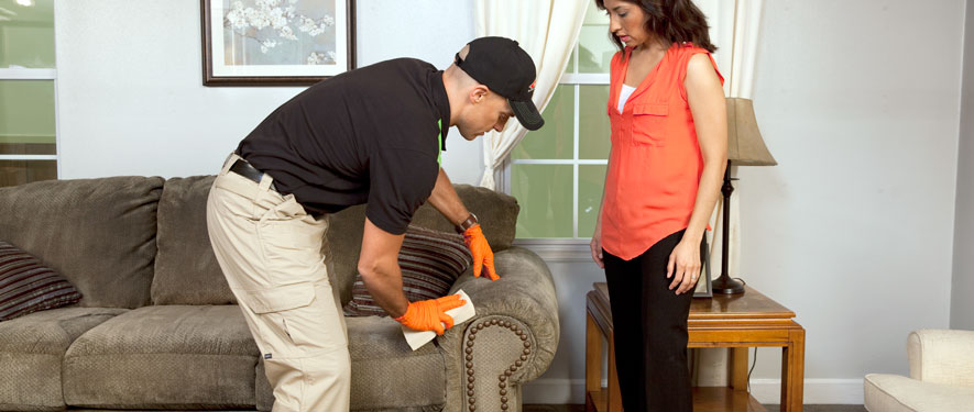 El Cajon, CA carpet upholstery cleaning
